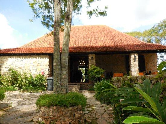 Cafetal Buenavista